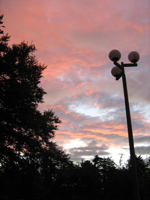 Queens Gardens streetlamp at dusk