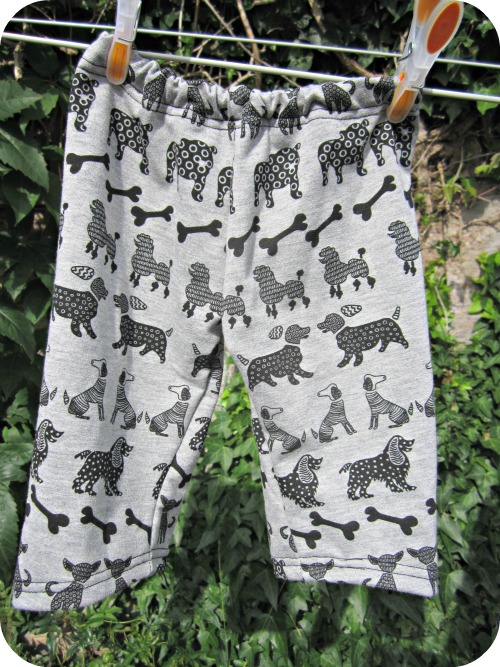dogs_front