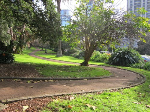 Path in Auckland