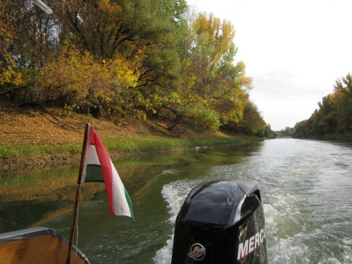 Boating on the Tisza river