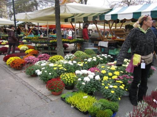 Ljubljana flower market