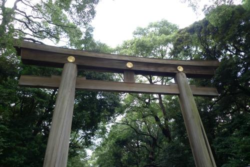 Meiji Jingu shrine gate