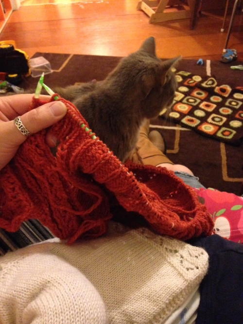knitting and cat